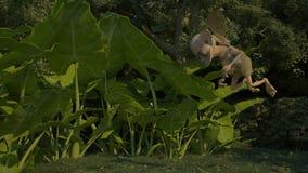 Fantastic character Curious Chudilo. Wood inhabitant Chudilo is keen examines the find Royalty Free Stock Photo