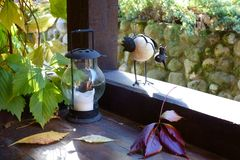 Curious decorative bird with a crown on a wooden veranda stock images