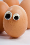 Curious eggs Royalty Free Stock Image