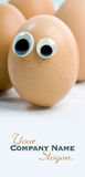 Curious eggs Royalty Free Stock Photography