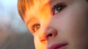 Curious face of the boy. Positive emotions of young boy. Traveling by train concept. Eyes of the kid with serious face
