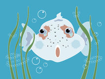 Curious Fish. Illustration of funny curious fish in blue ocean Vector Illustration