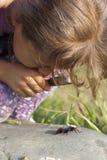 Curious Girl Stock Image