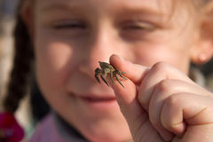Curious girl. Looking at crab in her fingers Royalty Free Stock Photography