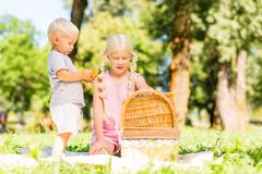 Nice children exploring a basket in the park stock image