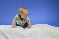 Curious little baby boy on the white blanket, studio shot, isolated on blue background Royalty Free Stock Photography