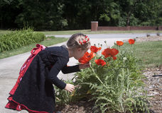 Curious Little Girl looking at Flowers Royalty Free Stock Photography