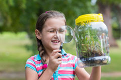 Curious little girl looking at jar Stock Image