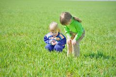 Curious little girls in the grass Stock Images