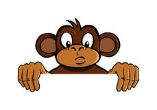 Curious monkey holding up an invisible frame Royalty Free Stock Image