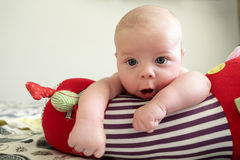 Curious newborn baby boy lying on a crawling roll Royalty Free Stock Photography