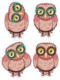 Curious Owl in Teal Glasses Royalty Free Stock Image