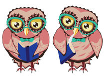 Curious Owl in Teal Glasses Royalty Free Stock Photo