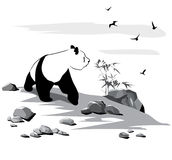 Curious panda. Among stones and birds on white background Royalty Free Stock Photos
