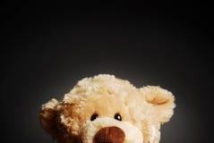 A curious Teddy bear. A curious, peering Teddy bear on a dark background stock image