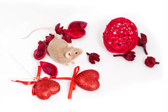 Curious tiny golden mouse sits amid dry red flowers and shiny decorative hearts. Royalty Free Stock Image