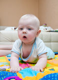 Curious toddler Royalty Free Stock Photography