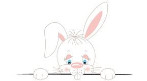 Curious white bunny peeking out Royalty Free Stock Images