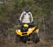 Curiously ATV 4x4 rider Stock Photography