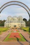 Curitiba Botanische Tuin Royalty-vrije Stock Fotografie