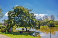 CURITIBA, BRASILIEN - 12. MAI 2016: Leute, die den Schatten eines großen Baums nahe bei einem See im botanischen Park von genieße Lizenzfreie Stockbilder