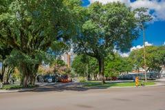 CURITIBA BRASILIEN - MAJ 12, 2016: bussstationer som framme lokaliseras i mitt av en parkera, stora träd av bussstationerna Arkivbild