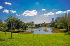 CURITIBA BRASILIEN - MAJ 12, 2016: trevlig liten sjö som lokaliseras i botaniska trädgården, stadshorisont som bakgrund Royaltyfri Bild