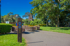 CURITIBA ,BRAZIL - MAY 12, 2016: bosque alemao is a park in the city builded in honor of the german immigrants Royalty Free Stock Photos