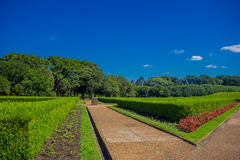 CURITIBA ,BRAZIL - MAY 12, 2016: nice view from the french style gardens with geometrical shapes Stock Photography