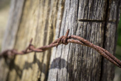 Curl of Barbed Wire Royalty Free Stock Images