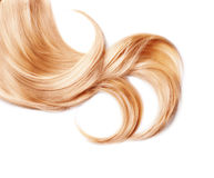 Curl of healthy blond hair. Isolated on white stock photography