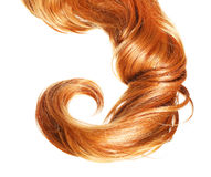Curl  Red Hair isolated on white background Royalty Free Stock Images