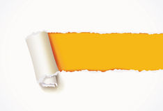 Curl of white paper. Torn paper Royalty Free Stock Images