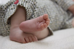 Curled baby toes Stock Photos