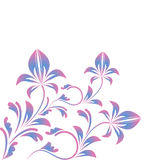 Curled blue pink floral ornament isolated on white Royalty Free Stock Photo