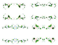 Curled floral frames Royalty Free Stock Photos