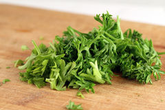 Curled leaf parsley Royalty Free Stock Photos