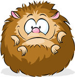 Curled up hedgehog  on white background - funny vector cartoon. Animal Stock Images