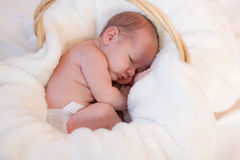 Curled up infant in basket. A sweet, precious baby of four weeks of age is curled up in a white fluffy blanket in a basket. He is trying to wake up from a nap stock photography