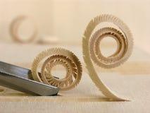 Curled woodshaving Stock Image