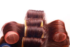 Curlers in hair Royalty Free Stock Image