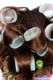 Curlers in the hair Stock Photography