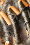 Curlers in her hair Royalty Free Stock Photography