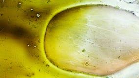 Curlicue красок Стоковые Изображения RF