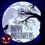 Curlie Halloween Fotografia Stock Libera da Diritti