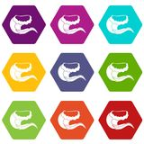 Curling and cracking wave icon set color hexahedron. Curling and cracking wave icon set many color hexahedron isolated on white vector illustration Stock Image