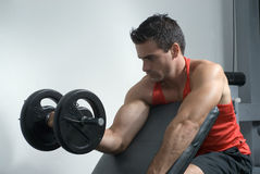 Curling a Dumbbell - Right Arm Horizontal Royalty Free Stock Images