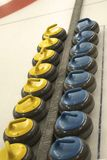 Curling rocks in a row Royalty Free Stock Photography
