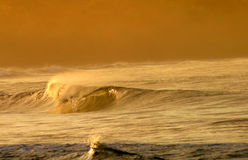 Curling Wave in Costa Rica royalty free stock photo
