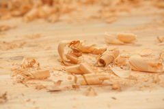 Curls of cedar shavings Royalty Free Stock Image